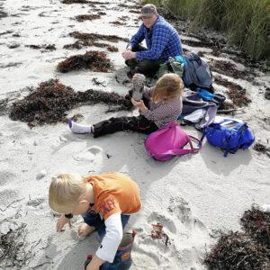 strand_natur_børn_pause_langeland_uforstyrret_naturoplevelse