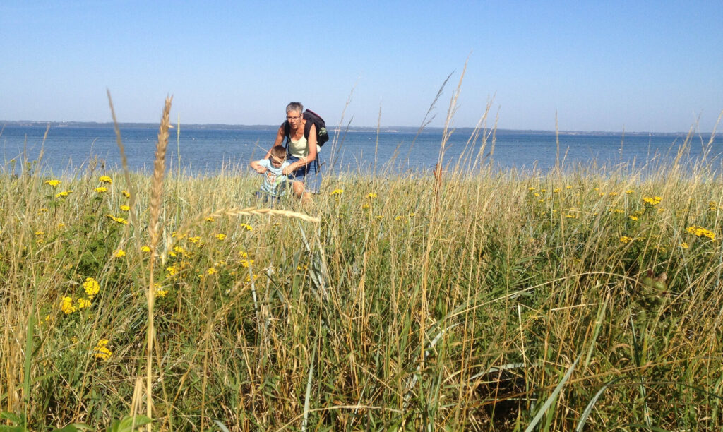 bedsteforældre_børnebørn_vandretur_med_børnebørn_oplevelse_Denmark_langeland