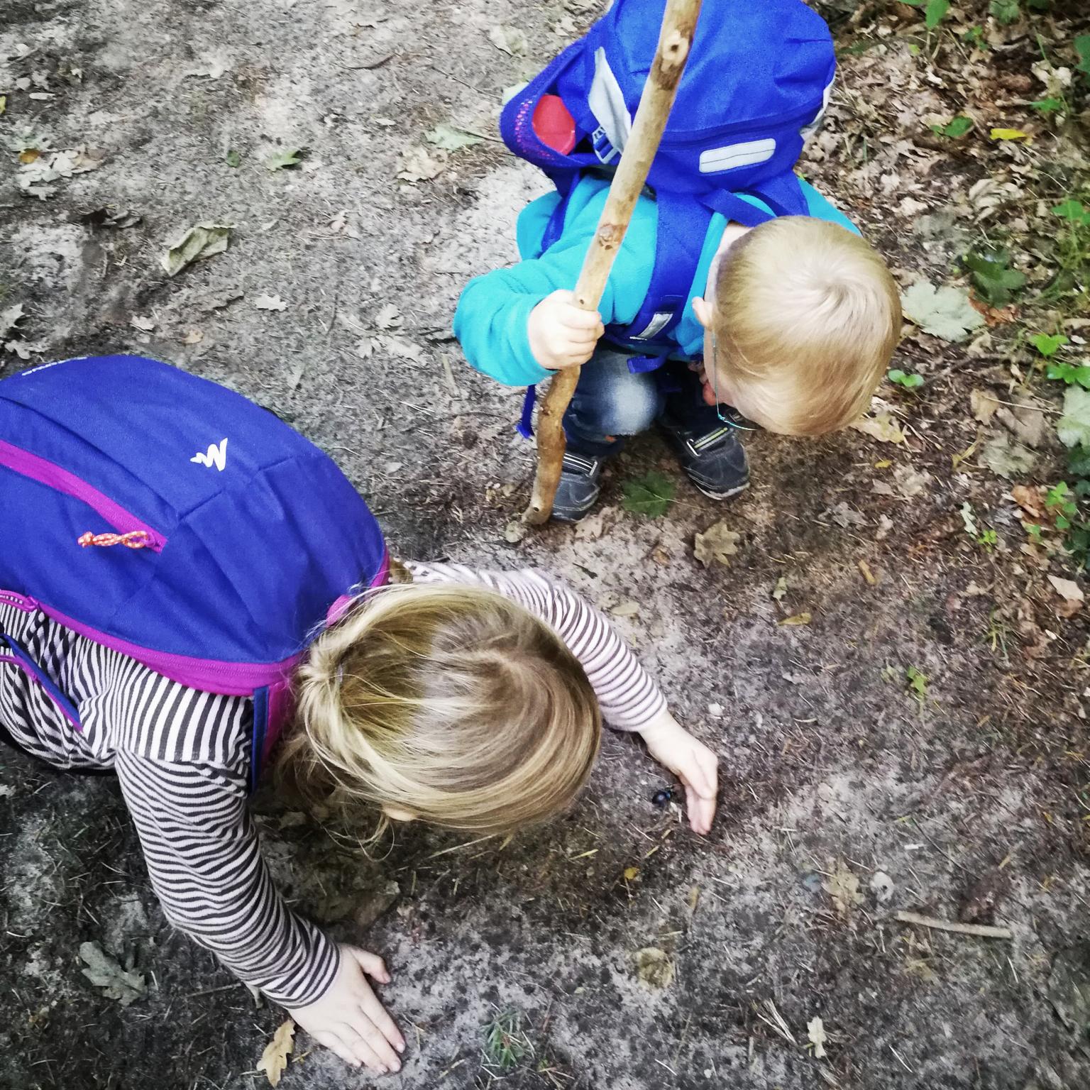 vandretur_familie_enlige_born_langeland_oplevelser