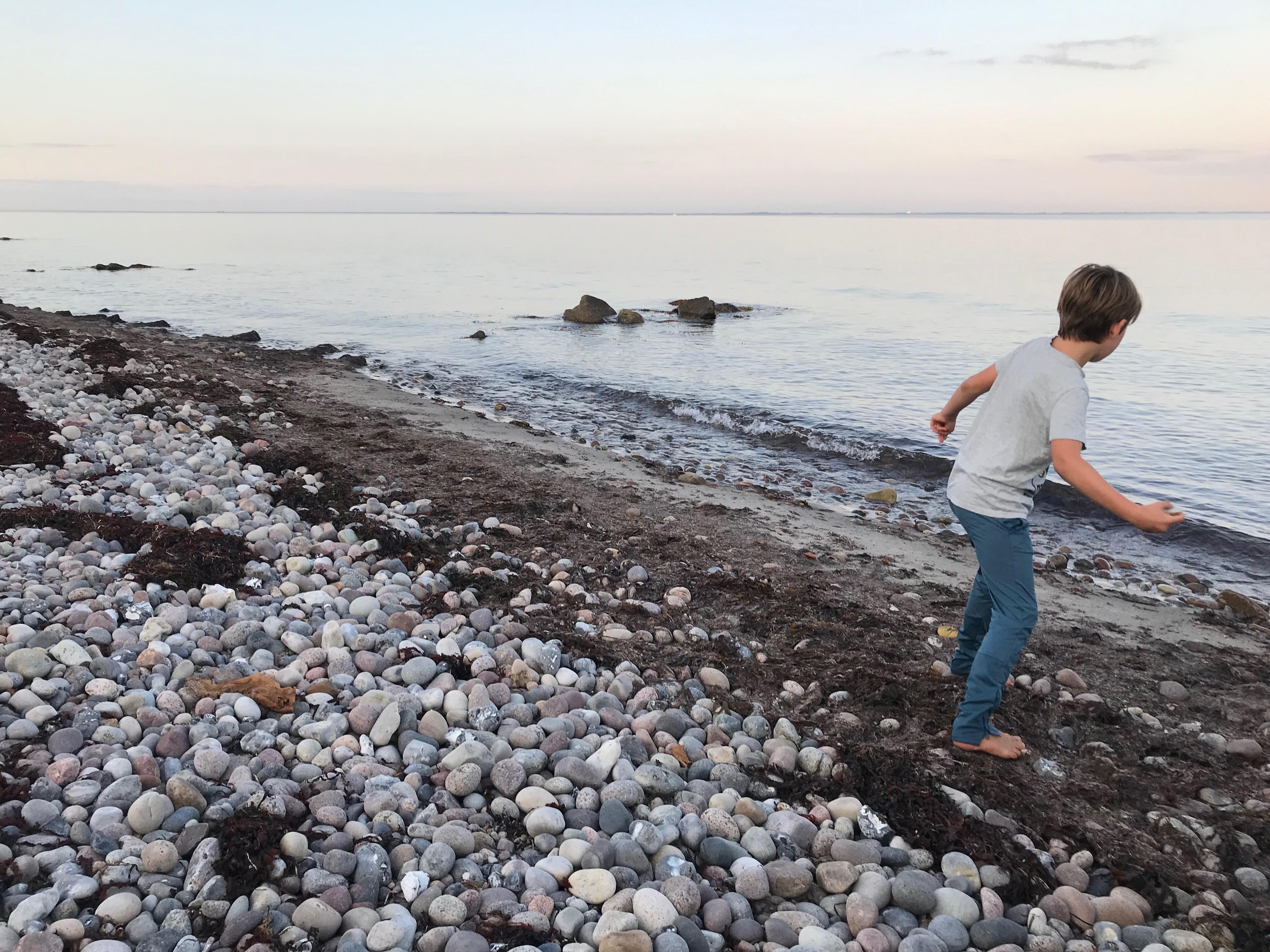 Dreng slår smut med sten ved standen på Langeland i solnedgangen